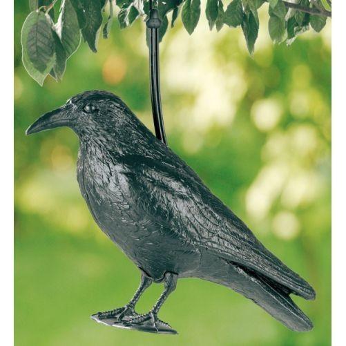 Havran maketa na plašení špačků a holubů
