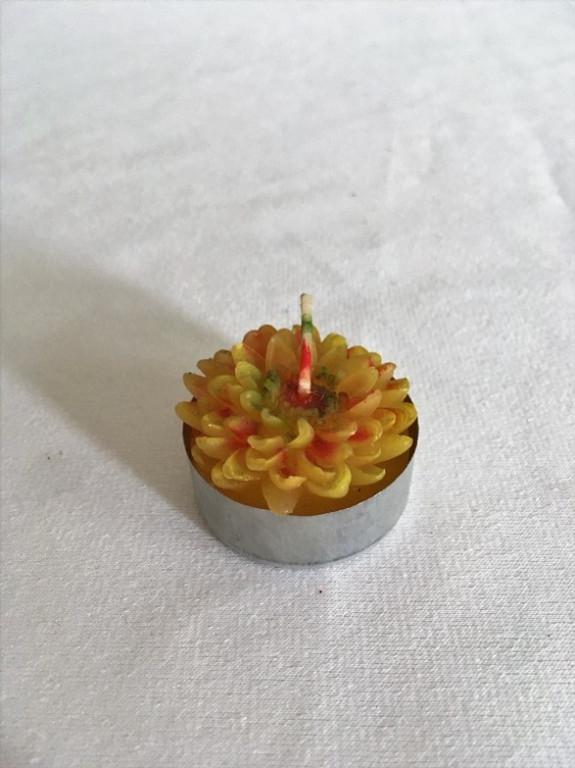 Malá svíčka kytka